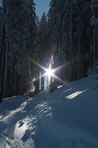 silke tauchert/fotofee-st.de/alpspitze/nesselwang