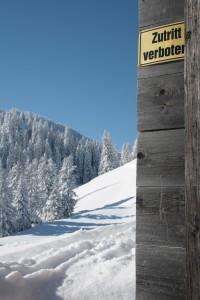 silke tauchert/fotofee-st.de/winterwonderland