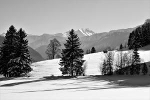 silke tauchert/www.fotofee-st.de/tannheimertal/winter