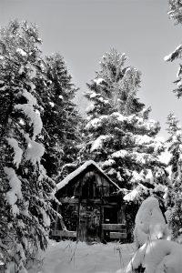 silke tauchert/www.fotofee-st.de/winter/tannheimertal/schnee