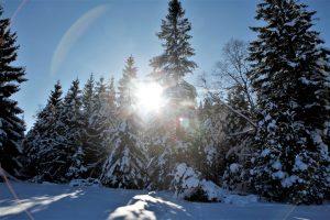 silke tauchert/www.fotofee-st.de/tannheimertal/schnee/winter