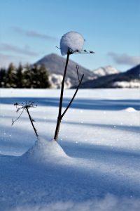 silke tauchert/www.fotofee-st.de/schnick/winter/berge