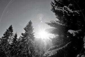 silke tauchert/www.fotofee-st.de/winter/tannheimertal