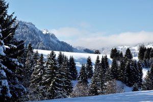 silke tauchert/www.fotofee-st.de/winter/schnee/berge/allgäu