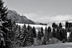silke tauchert/www.fotofee-st.de/allgäu/tannheimertal/schnee/berge