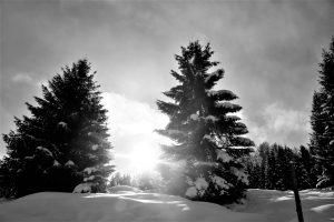 silke tauchert/www.fotofee-st.de/tannheimertal/winter/schnee/allgäu