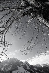 silke tauchert/www.fotofee-st.de/tannheimertal/schnee/allgäu/winter