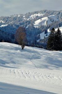 silke tauchert/www.fotofee-st.de/winter/allgäu/berge/tannheimertal