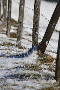 silke tauchert/www.fotofee-st.de/görisried/allgäu/neuschnee/winter