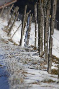 silke tauchert/fotofee-st.de/winter/görisried/neuschnee/allgäu