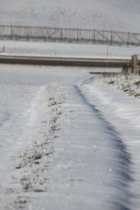 silke tauchert/www.fotofee-st.de/allgäu/görisried/neuschnee/winter