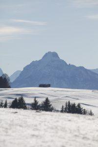 silke tauchert/www.fotofee-st.de/allgäu/winter/görisried/säuling/neuschnee