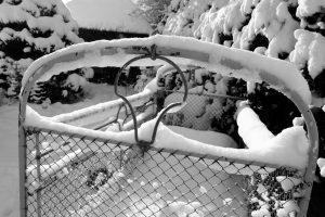 silke tauchert/fotofee-st.de/winter/görisried