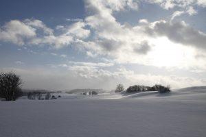 silke tauchert/www.fotofee-st.de/winter/frost/schnee