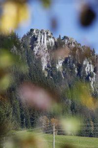 silke tauchert/fotofee-st.de/herbst/wald/allgäu
