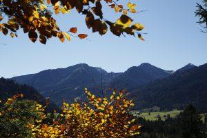 silke tauchert/fotofee-st.de/allgäu/tannheimertal/herbst/goldener oktober