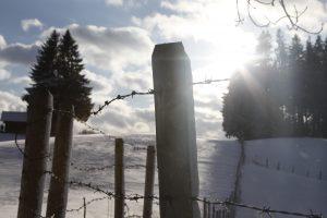 silke tauchert/www.fotofee-st.de/allgäu/frost/wintertag