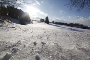 silke tauchert/www.fotofee-st.de/allgäu/winter/frost