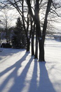 silke tauchert/www.fotofee-st.de/winter/frost/allgäu/görisried/schnee
