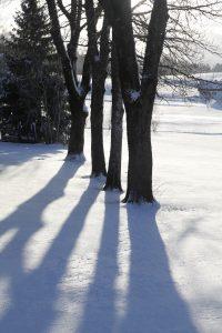 silke tauchert/www.fotofee-st.de/allgäu/frost/schnee/winter