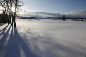 silke tauchert/www.fotofee-st.de/allgäu/frost/winter/allgäu/görisried