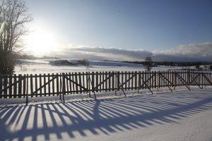 silke tauchert/www.fotofee-st.de/winter/schnee/frost/allgäu