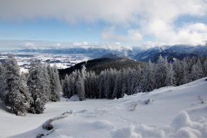 silke tauchert/www.fotofee-st.de/allgäu/winter/neuschnee/frost