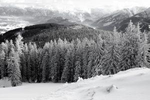 silke tauchert/www.fotofee-st.de/winter/neuschnee/frost/berge/allgäu/alpspitz