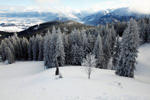 silke tauchert/www.fotofee-st.de/alpspitz/schnee/berge/allgäu/frost
