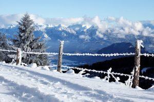 frostige alpspitze – spitze frostalpe