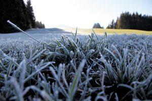 silke tauchert/fotofee-st.de/frost/allgäu