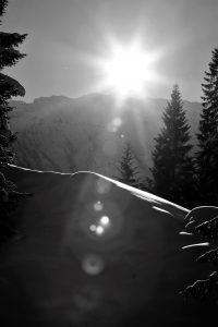 silke tauchert/www.fotofee-st.de/winter/tannheimertal/schnee/winterwonderland