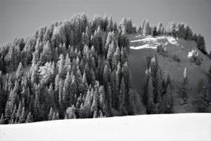 silke tauchert/www.fotofee-st.de/allgäu/tannheimertal/jungholz/winter/schnee